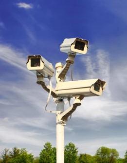 Tampa Negligent Security Attorney